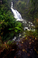 Waikani Falls with kalo taro triple waterfall Road to Hana Maui Hawaii