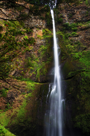 Multnomah Falls, the crown jewel of the Columbia River Gorge, Oregon