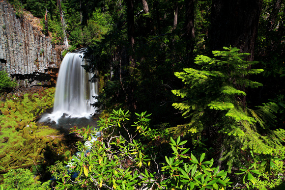 Warm Springs Falls in Umpqua National Forest basalt volcanic